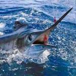 Del 6 al 11 de junio se celebrará el Torneo de Pesca Ernest Hemingway