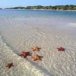 Las playas de Cayo Santa María son reconocidas por su transparencia.